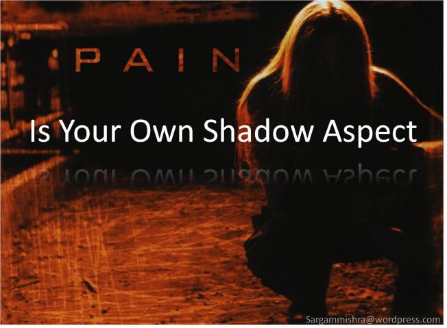 Pain your own Shadow Aspect_Sargam