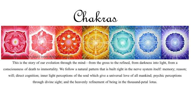 sargam_healing-mind-body-n-soul_chakras-quote