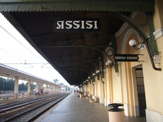 sargam mishra Assisi